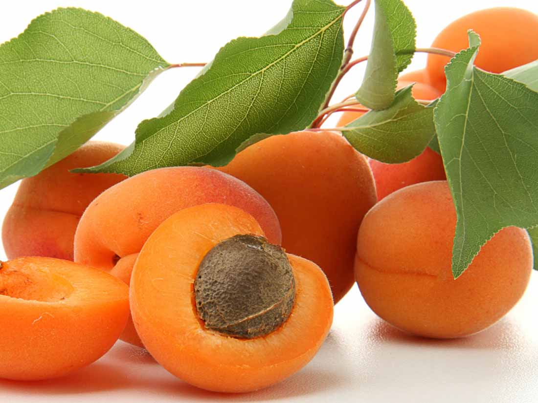 Top 10 Apricots producing countries in the world | What country produce the most apricots in the world