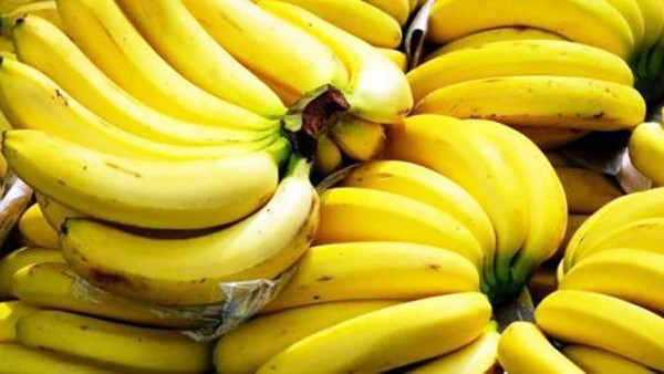 Top 10 Banana Producing Countries in the World