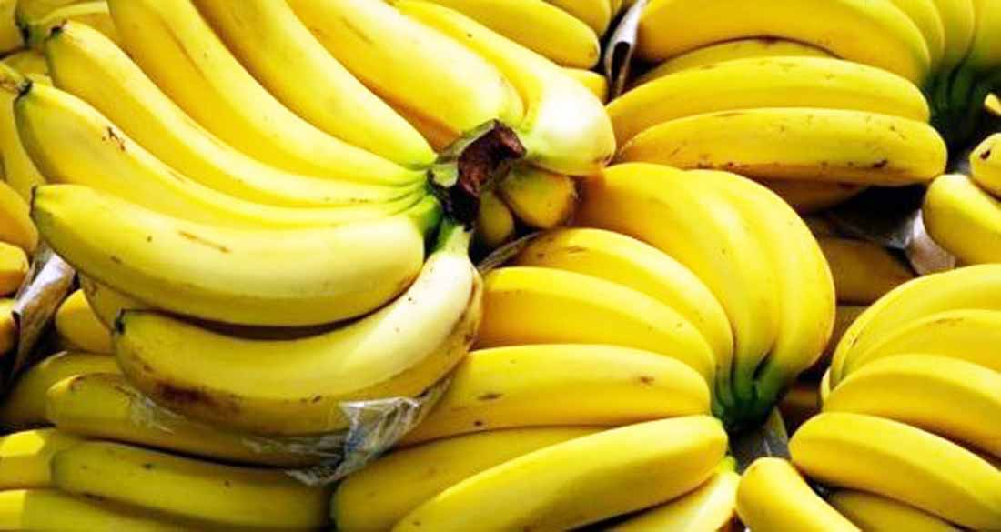 Top 10 Banana Producing Countries in the World | Which Country Produces the Most Bananas in the World,Top 10 Largest Producers of Bananas in the world, highest banana producing country, TOp 10 Highest Banana Producing Countries in the World