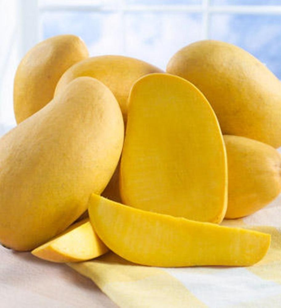 Top 10 Mango Producing Countries in the World