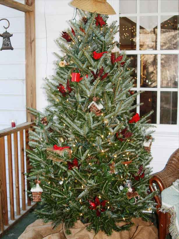 Top 10 christmas tree decorating ideas ever countries of for Decorating outdoor trees