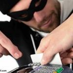 Credit Card Fraud Statistics Report